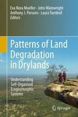 Patterns of Land Degradation in Drylands
