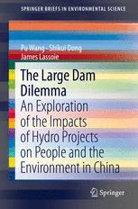 The Large Dam Dilemma
