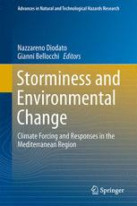 Storminess and Environmental Change