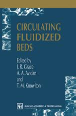 Circulating Fluidized Beds