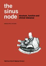 The Sinus Node