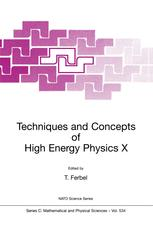 Techniques and Concepts of High Energy Physics X
