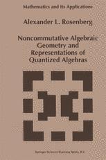 Noncommutative Algebraic Geometry and Representations of Quantized Algebras