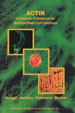 Actin: A Dynamic Framework for Multiple Plant Cell Functions