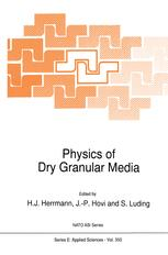 Physics of Dry Granular Media