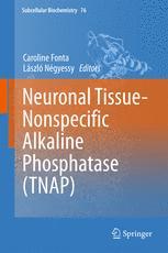 Neuronal Tissue-Nonspecific Alkaline Phosphatase (TNAP)
