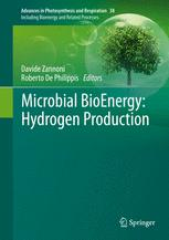 Microbial BioEnergy: Hydrogen Production