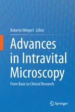 Advances in Intravital Microscopy
