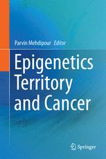 Epigenetics Territory and Cancer