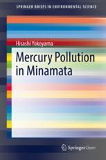 Mercury Pollution in Minamata