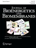 Journal of bioenergetics