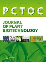 Phd thesis on micropropagation