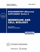 The influence of probiotics and probiotic product on respiration of mitochondria and intracellular calcium signal in cells of cardiovascular system