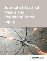 Journal of Brachial Plexus and Peripheral Nerve Injury