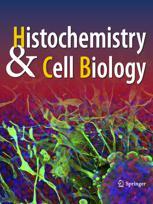 Zeitschrift für Zellforschung und mikroskopische Anatomie Abt. Histochemie