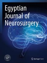 Egyptian Journal of Neurosurgery