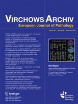 Virchows Archiv für pathologische Anatomie und Physiologie und für klinische Medizin
