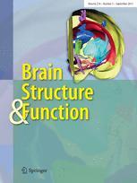 Referate und Beiträge zur Anatomie und Entwickelungsgeschichte
