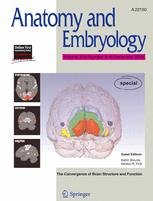 Anatomy and Embryology