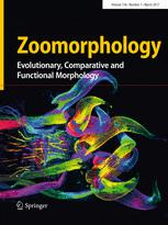 Zoomorphology