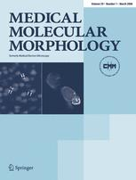 Medical Molecular Morphology