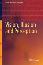 Vision, Illusion and Perception