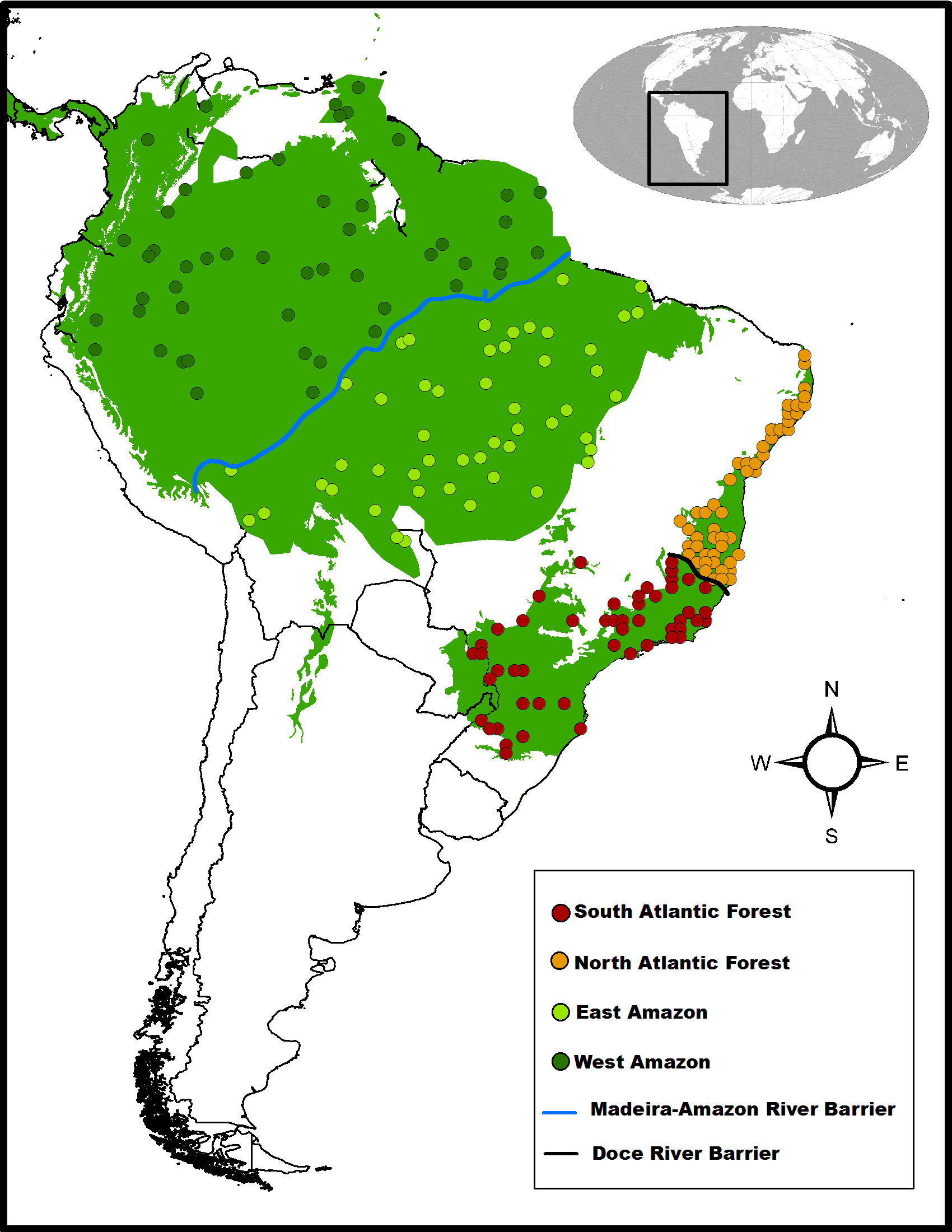 Biogeography of Neotropical Rainforests past connections between