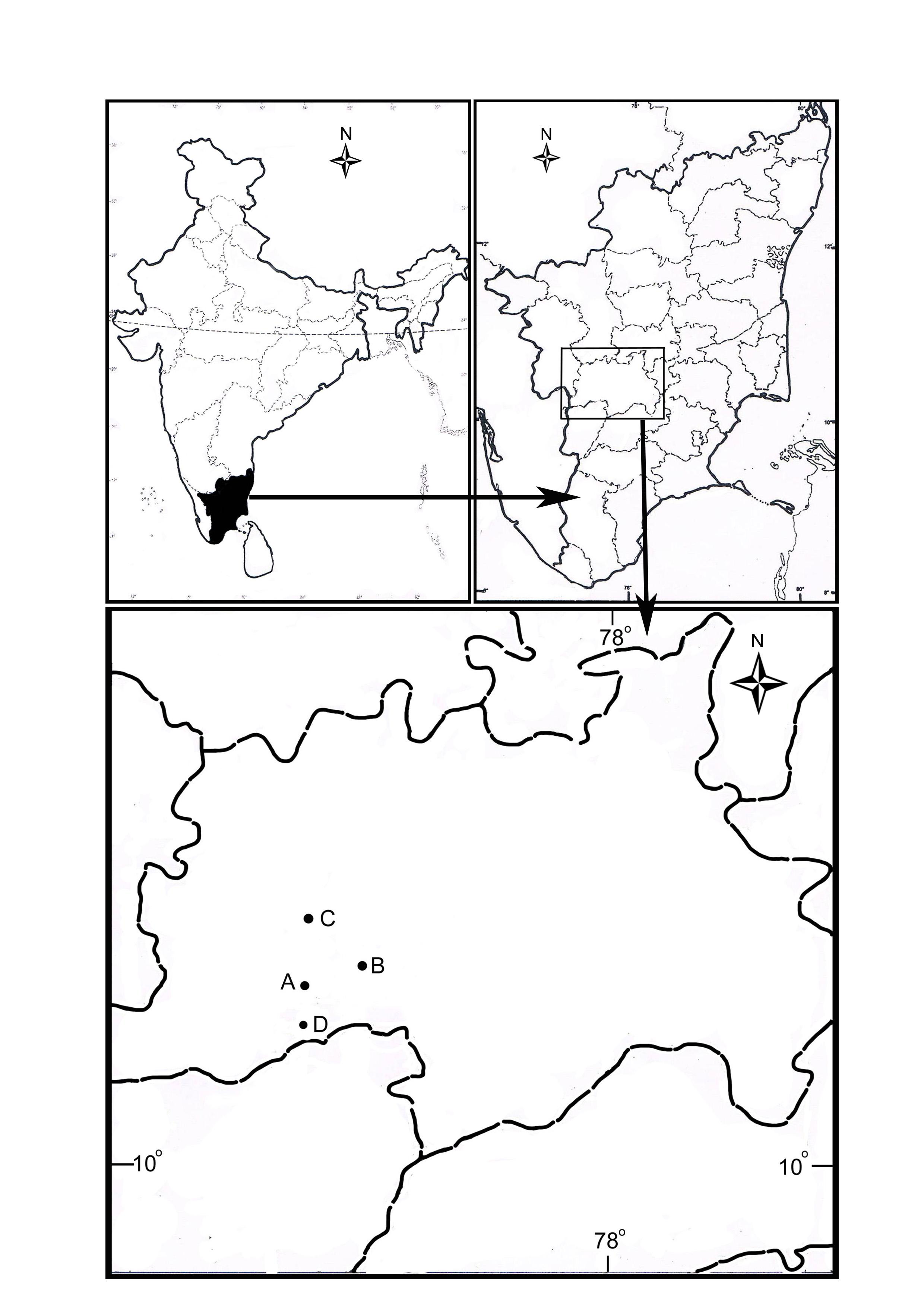 arbuscular mycorrhizal and dark septate endophyte fungal
