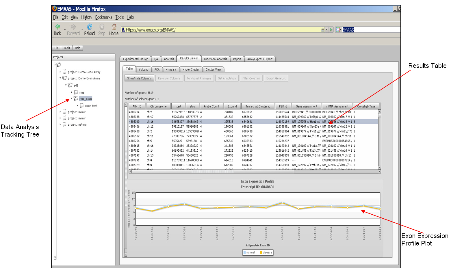 download Modellistica numerica per