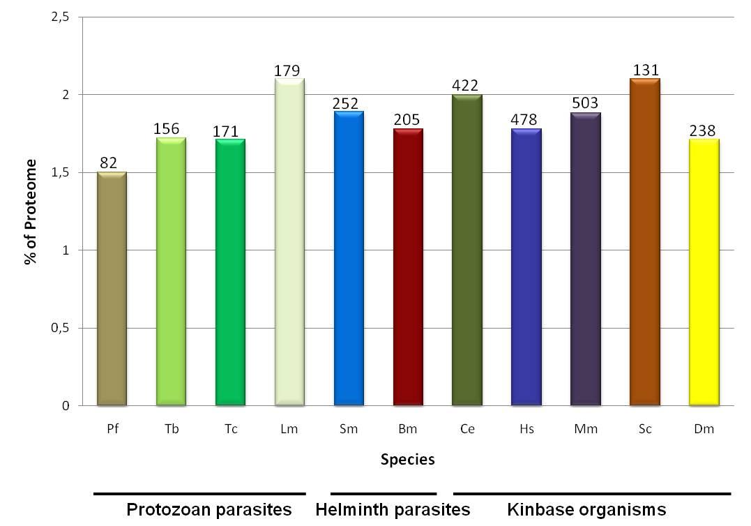 Eukaryotic protein kinases epks of the helminth parasite 1286420103379moesm10esmeg 63 publicscrutiny Image collections
