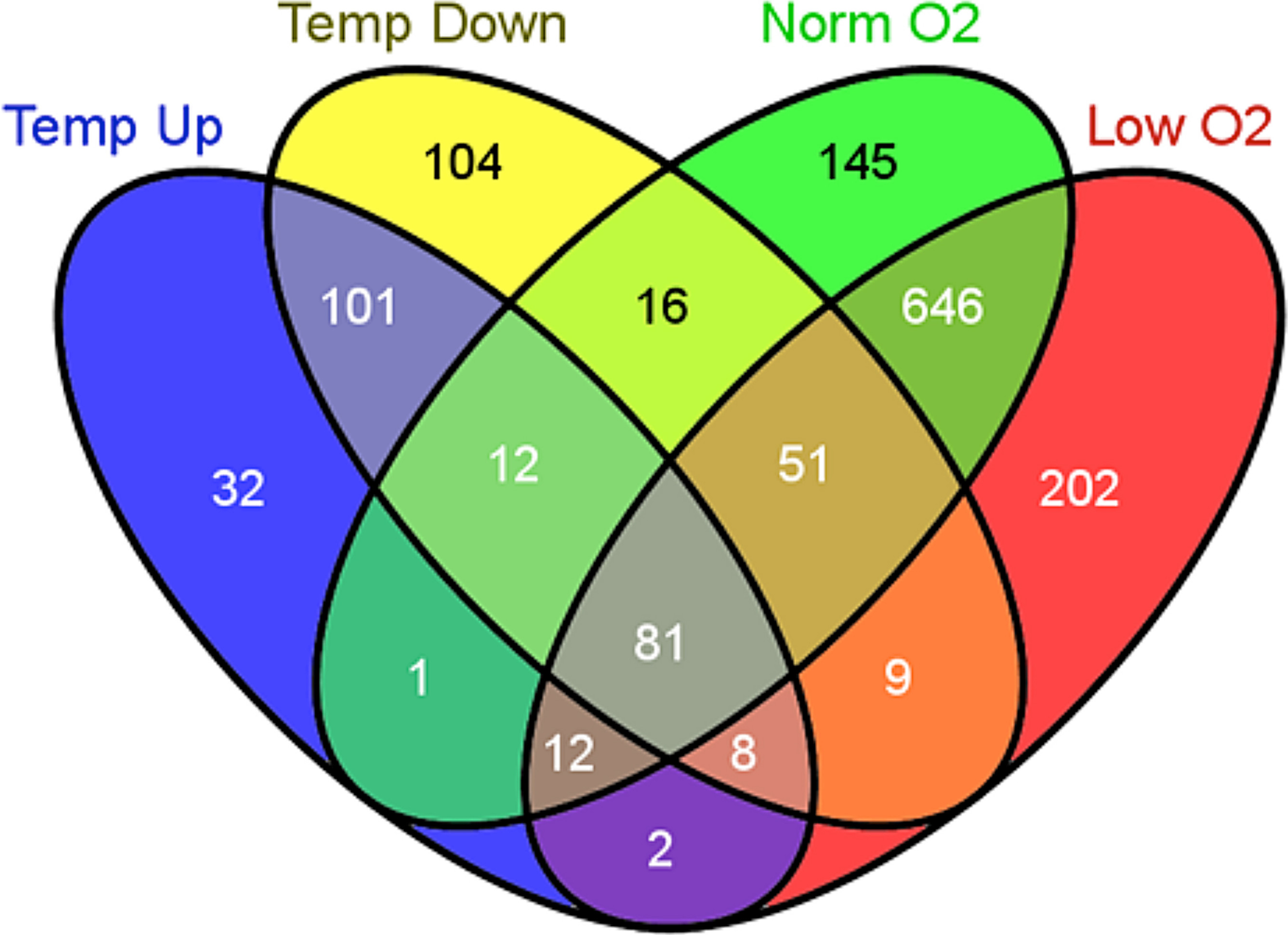 Transcriptional responses to temperature and low oxygen stress in declarations pooptronica