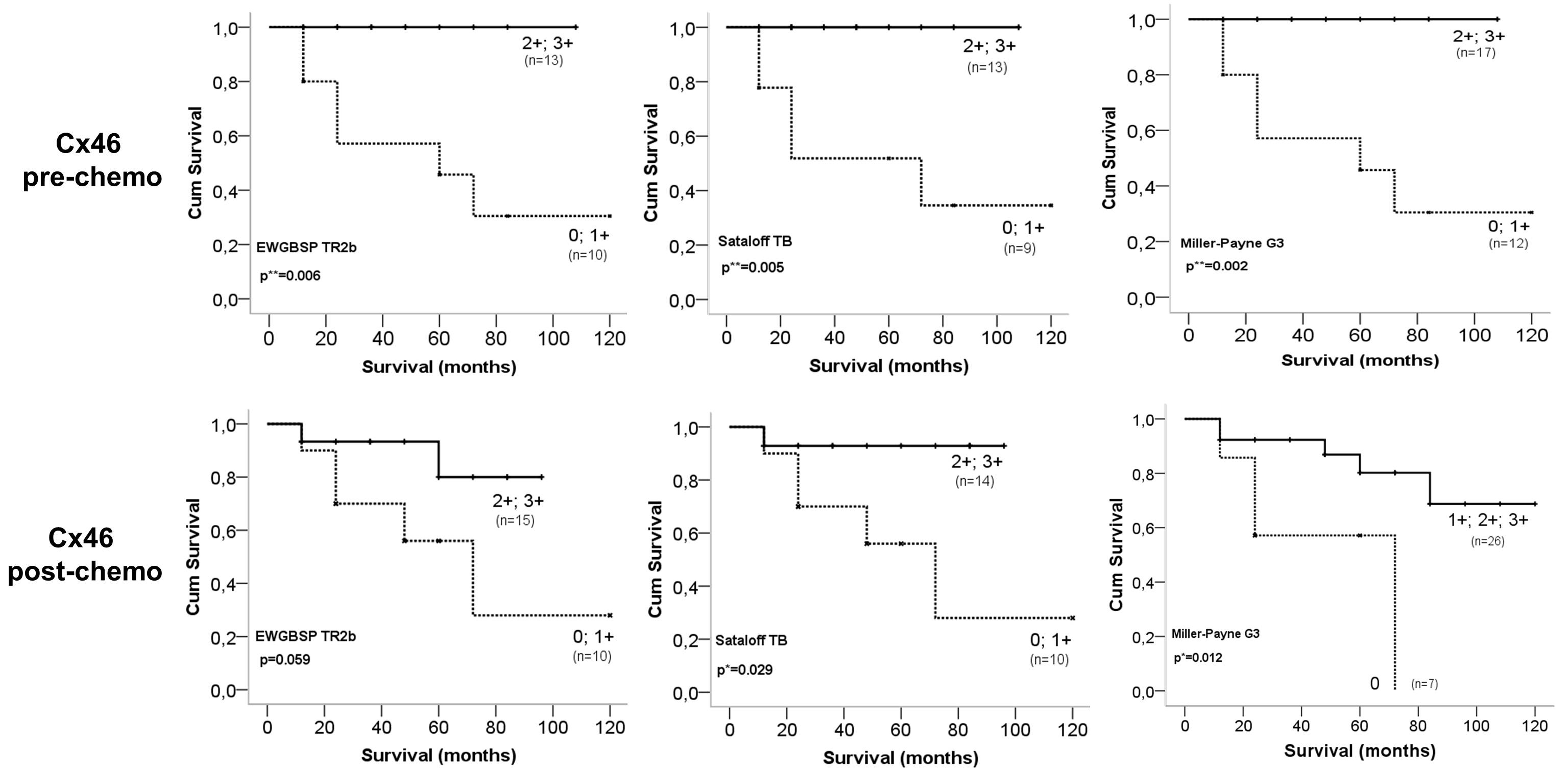 The potential prognostic value of connexin 26 and 46 expression in 1288520123694moesm6esmeg buycottarizona