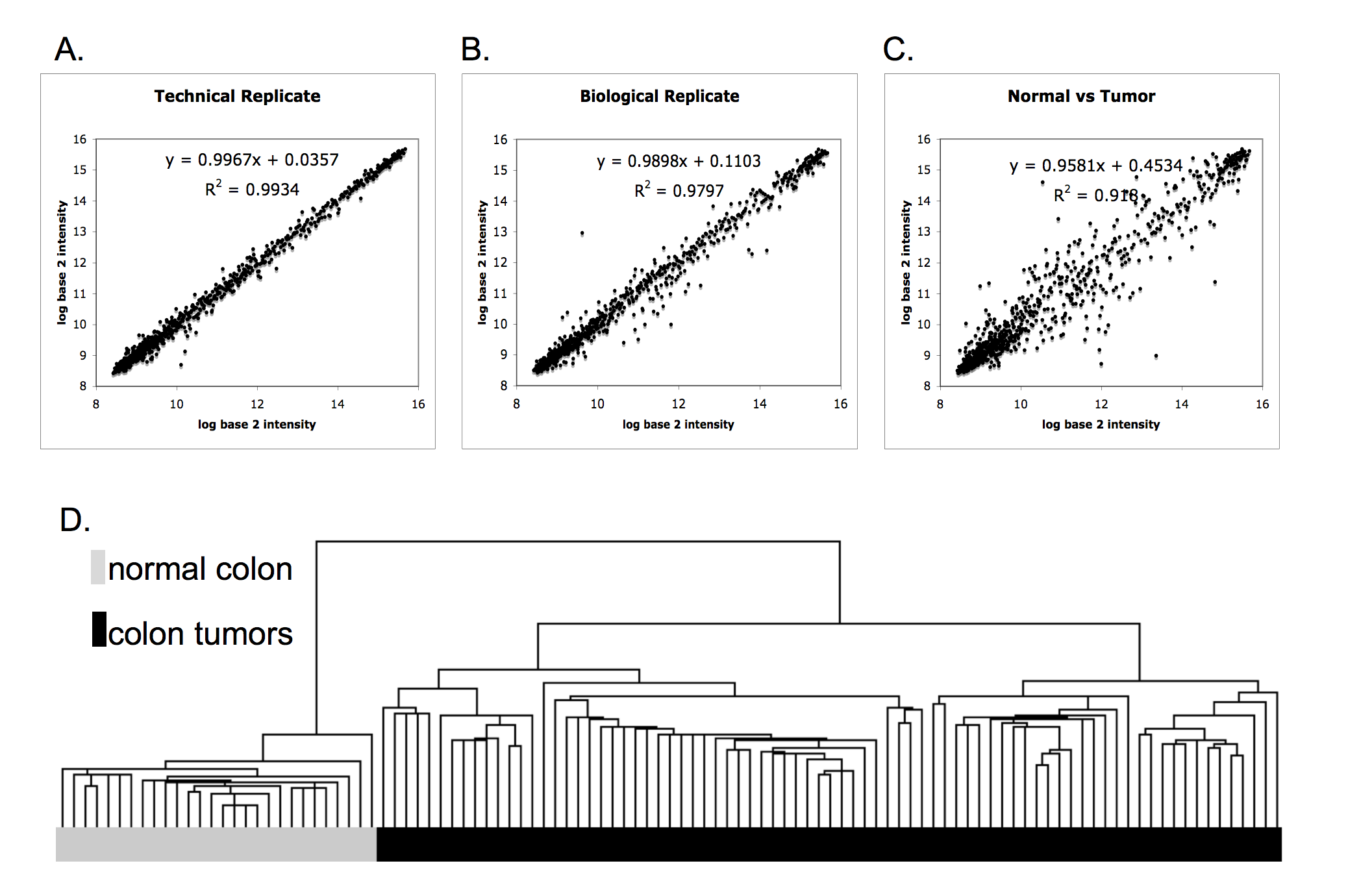 Human colon cancer profiles show differential microRNA expression ...