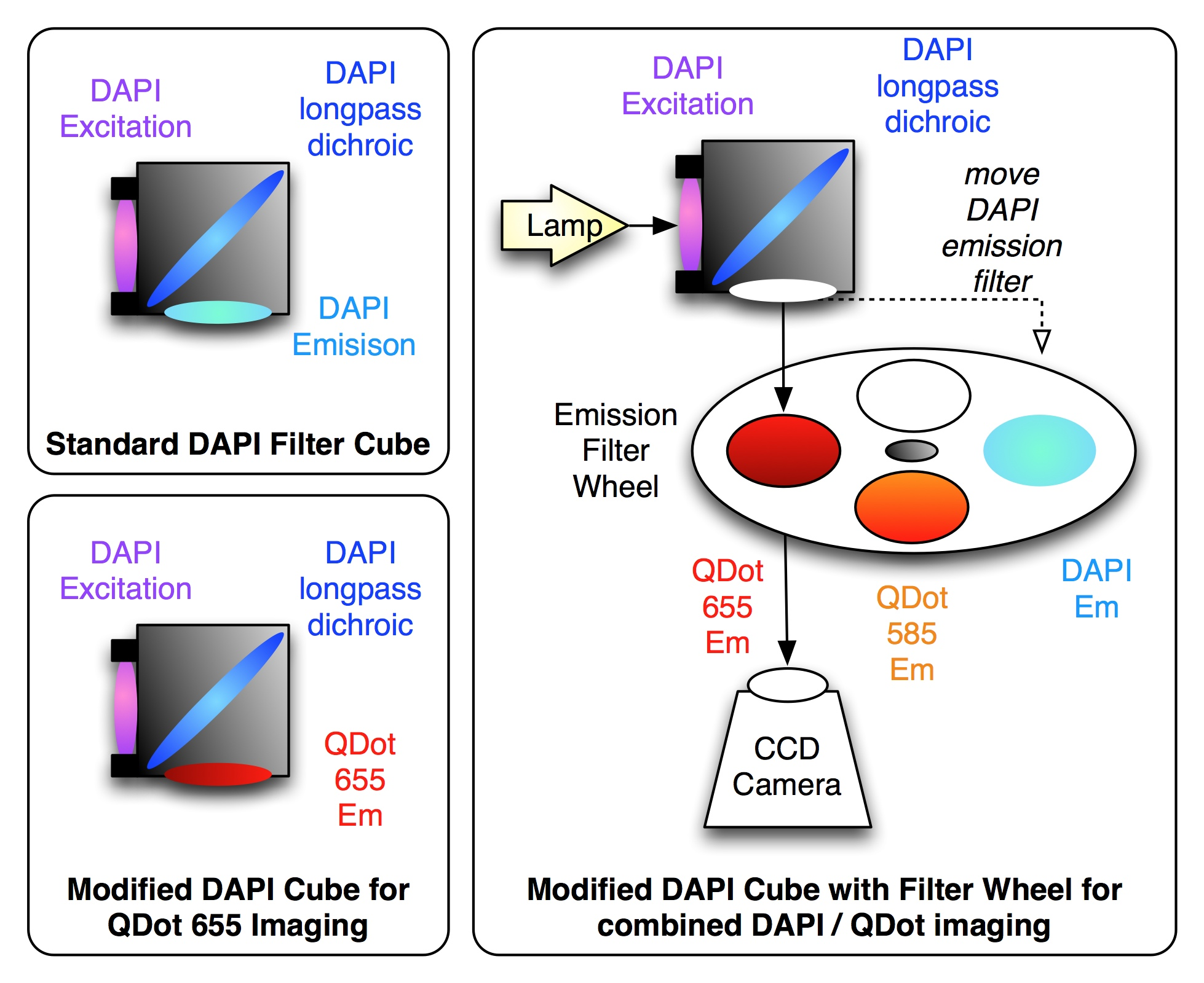 Combining M-FISH and Quantum Dot technology for fast chromosomal ...