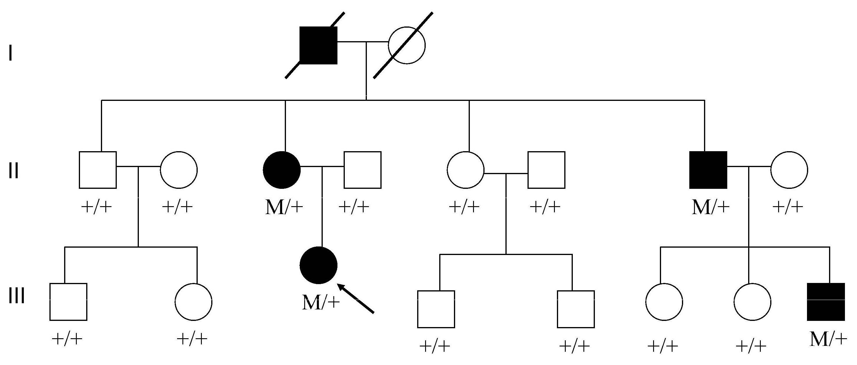 A novel mutation in c5l2 gene was associated with hyperlipidemia 1294420141205moesm2esmeg buycottarizona