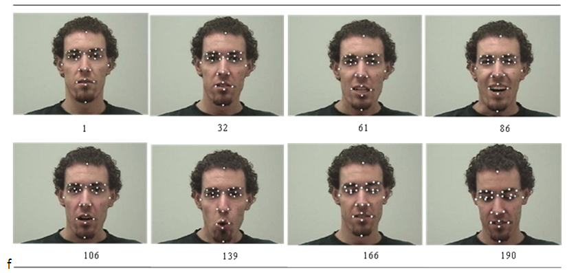 face recognition essay Concept generally refer to the abstract notion of what that category represents in one's mind ((robinson-riegler, 2008) the recognition of individual faces is in.