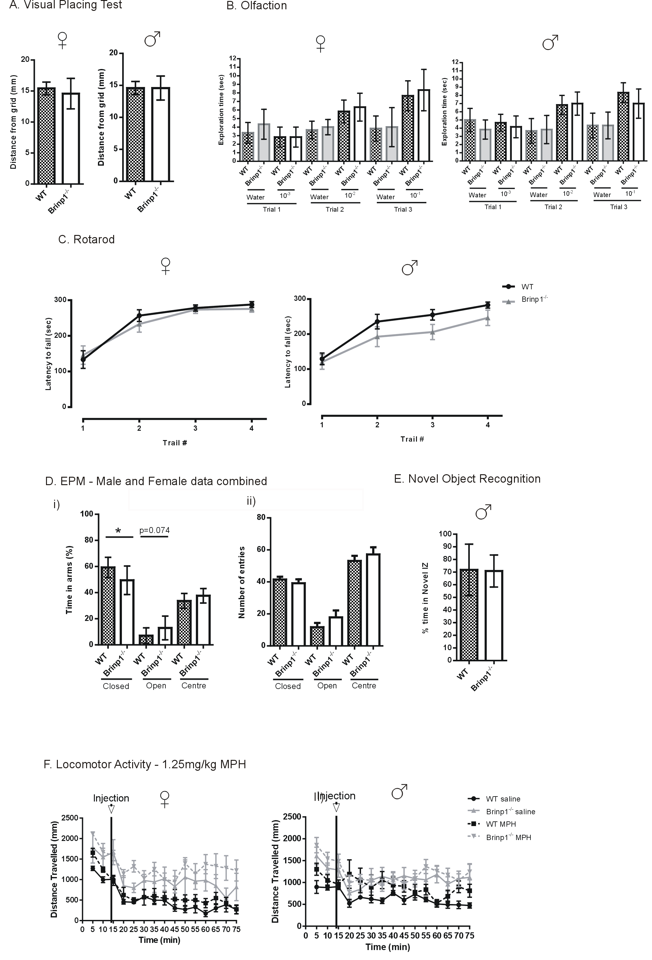 Brinp1 mice exhibit autism like behaviour altered memory additional behavioural tests a normal vision of brinp1 mice when lowered onto a wire mesh female t10 07670 p 04608 male t10 000 geenschuldenfo Image collections