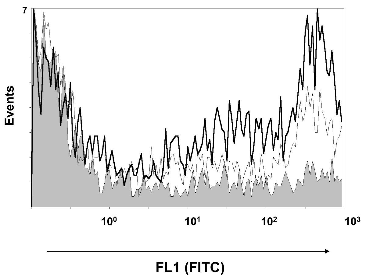 https://static-content.springer.com/image/art%3A10.1186%2F1297-9716-43-57/MediaObjects/13567_2012_Article_177_Fig3_HTML.jpg