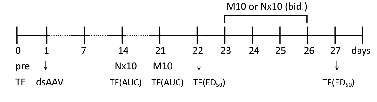 https://static-content.springer.com/image/art%3A10.1186%2F1423-0127-17-28/MediaObjects/12929_2010_Article_142_Fig1_HTML.jpg