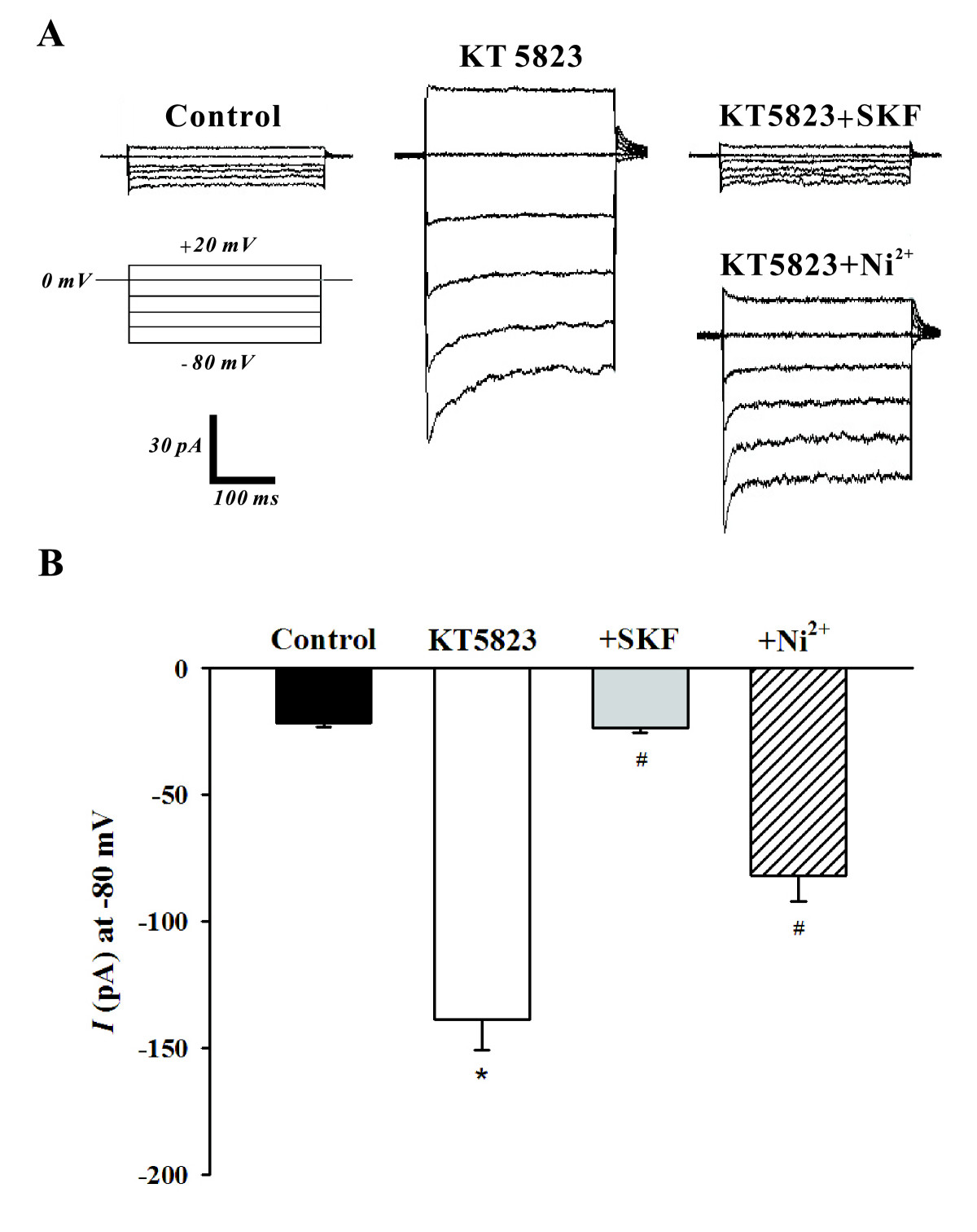 https://static-content.springer.com/image/art%3A10.1186%2F1423-0127-18-2/MediaObjects/12929_2010_Article_254_Fig2_HTML.jpg