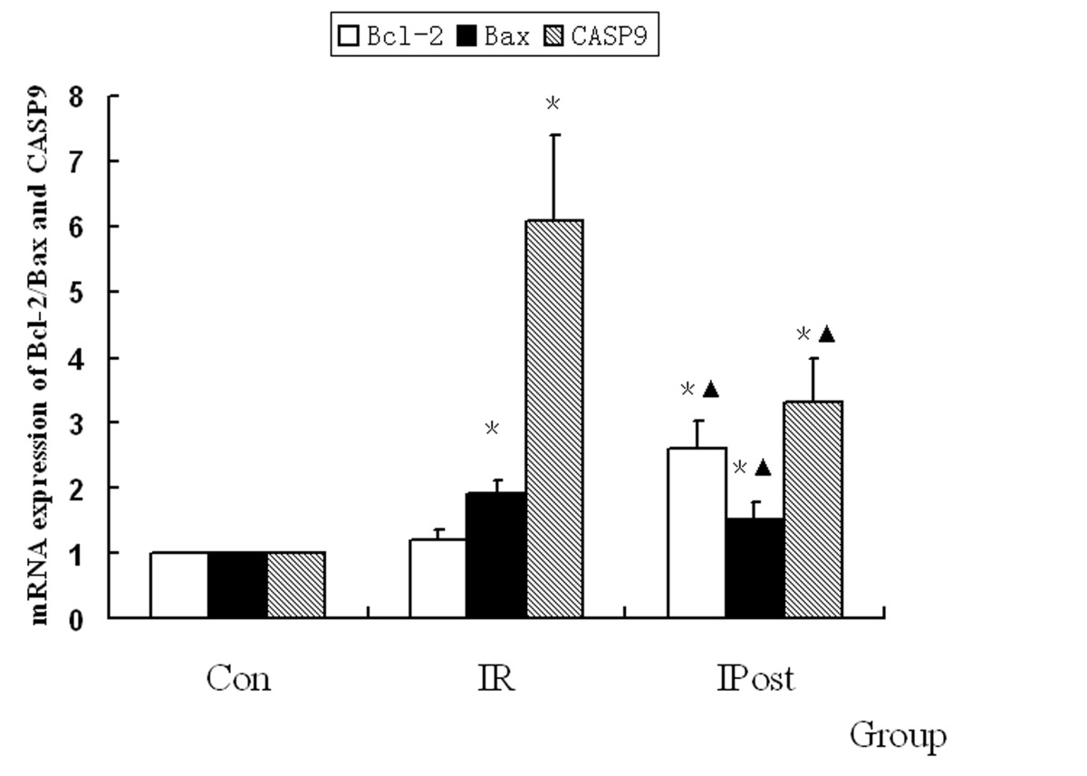 https://static-content.springer.com/image/art%3A10.1186%2F1423-0127-18-22/MediaObjects/12929_2010_Article_274_Fig6_HTML.jpg