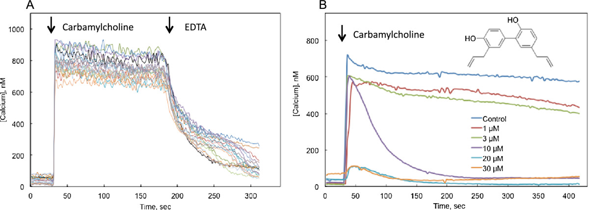 https://static-content.springer.com/image/art%3A10.1186%2F1423-0127-20-11/MediaObjects/12929_2012_Article_459_Fig1_HTML.jpg