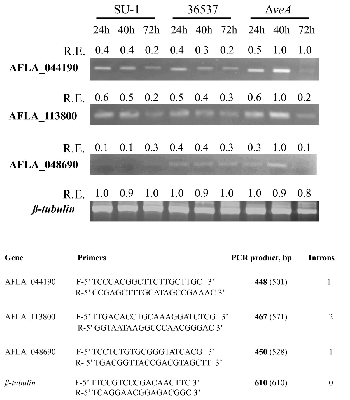 https://static-content.springer.com/image/art%3A10.1186%2F1471-2091-11-33/MediaObjects/12858_2010_Article_294_Fig6_HTML.jpg