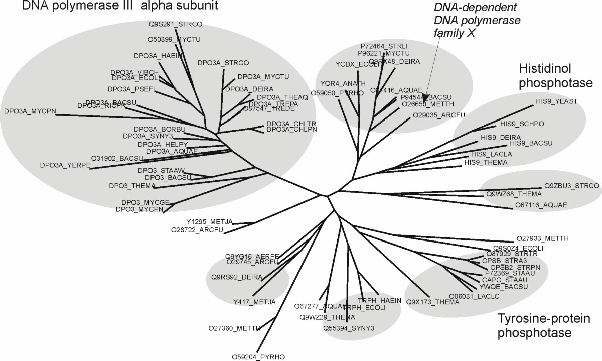 https://static-content.springer.com/image/art%3A10.1186%2F1471-2105-10-174/MediaObjects/12859_2009_Article_2904_Fig6_HTML.jpg