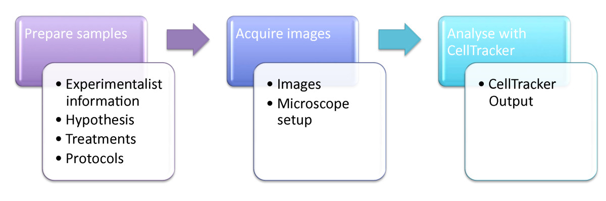 https://static-content.springer.com/image/art%3A10.1186%2F1471-2105-10-226/MediaObjects/12859_2009_Article_2956_Fig2_HTML.jpg