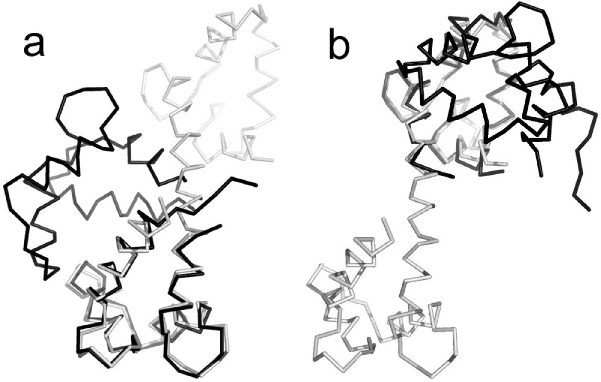 https://static-content.springer.com/image/art%3A10.1186%2F1471-2105-10-29/MediaObjects/12859_2008_Article_2759_Fig10_HTML.jpg