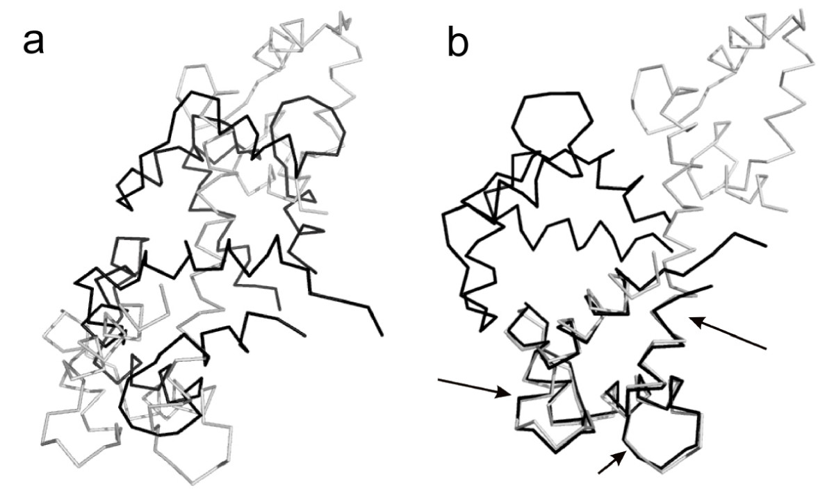 https://static-content.springer.com/image/art%3A10.1186%2F1471-2105-10-29/MediaObjects/12859_2008_Article_2759_Fig6_HTML.jpg