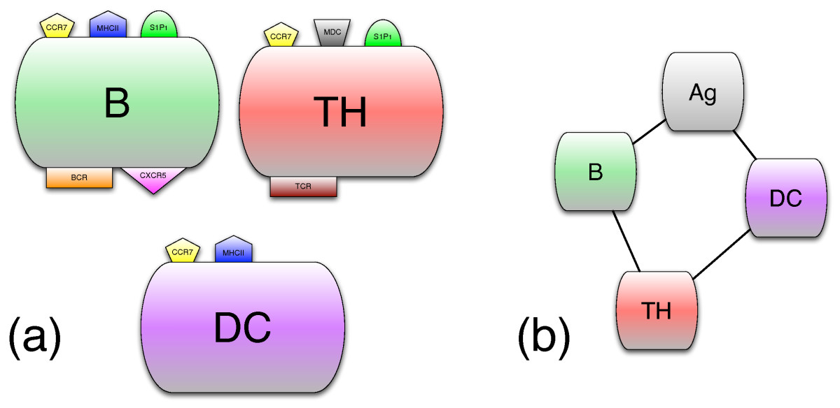 https://static-content.springer.com/image/art%3A10.1186%2F1471-2105-10-387/MediaObjects/12859_2009_Article_3117_Fig2_HTML.jpg