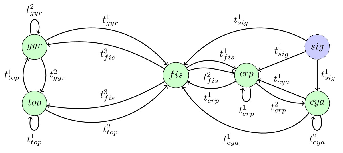 https://static-content.springer.com/image/art%3A10.1186%2F1471-2105-11-385/MediaObjects/12859_2010_Article_3842_Fig7_HTML.jpg