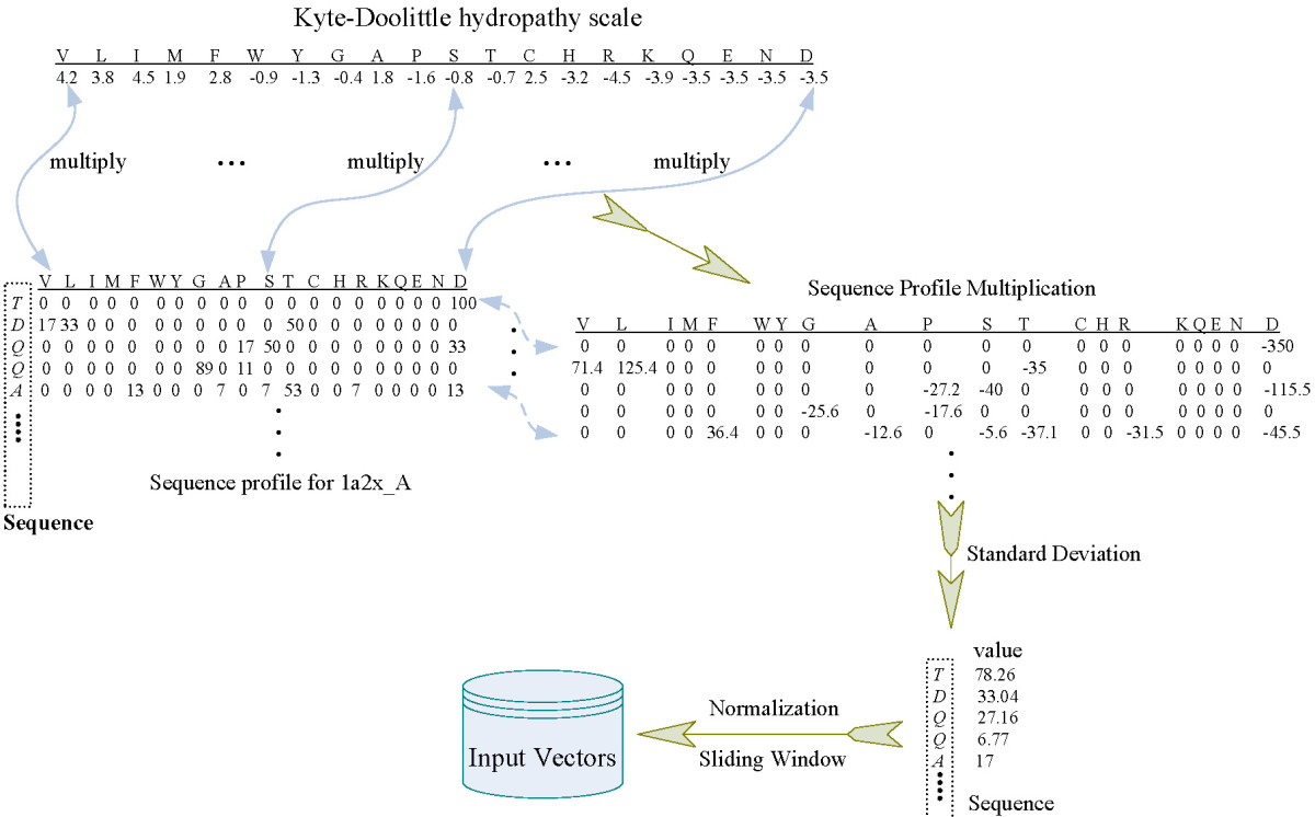 https://static-content.springer.com/image/art%3A10.1186%2F1471-2105-11-402/MediaObjects/12859_2010_Article_3859_Fig7_HTML.jpg